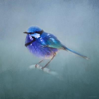 Wren Digital Art - Blue Fairy Wren by Michelle Wrighton