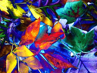 Photograph - Blue Fall Leaves by Beth Akerman
