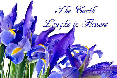 Photograph - Blue Flag Iris Flowers With Quote by Vizual Studio