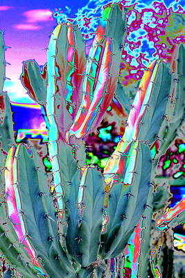 Photograph - Blue Flame Cactus Abstract by M Diane Bonaparte