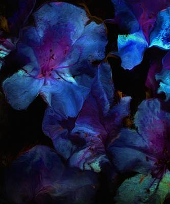 Digital Art - Blue Floral Fantasy by David Lane