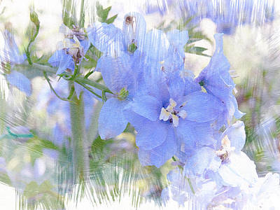 Photograph - Blue Flower Fantasy by Michele Loftus