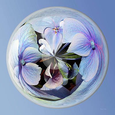 Photograph - Blue Flower Orb by Phyllis Denton