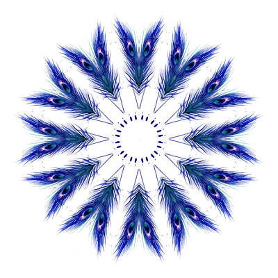 Royalty-Free and Rights-Managed Images - Blue Formation by Maggie Gardener