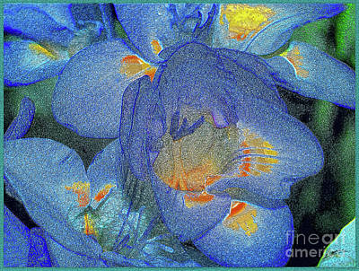Photograph - Blue Freesia's by Lance Sheridan-Peel
