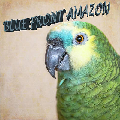 Photograph - Blue Front Amazon by Jennifer Grossnickle