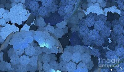 Digital Art - Blue Fungi by Ron Bissett