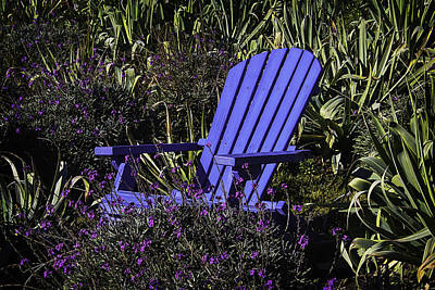 Garden Flowers Photograph - Blue Garden Chair by Garry Gay