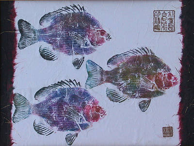 Printmaking Mixed Media - Blue Gill by Michele Caporaso