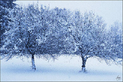 Photograph - Blue Glass Winter Apples by Wayne King