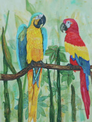 Painting - Blue Gold And Royal Macaw by Bonnie Rodgers