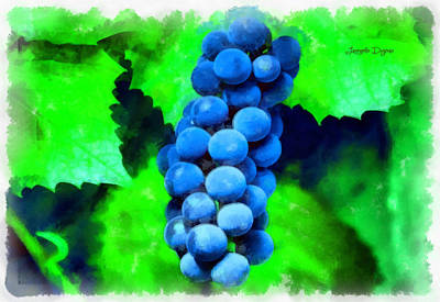 Grape Digital Art - Blue Grapes  - Aquarell Style -  - Da by Leonardo Digenio
