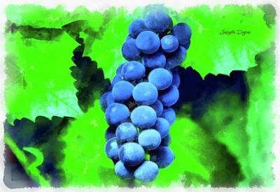 Grape Digital Art - Blue Grapes - Aquarell Over Paper by Leonardo Digenio