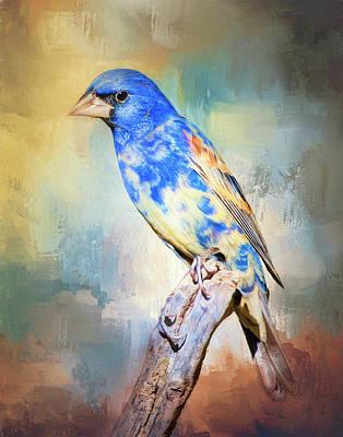 Photograph - Blue Grosbeak by Barbara Manis