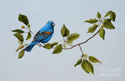 Painting - Blue Grosbeak by Charles Owens