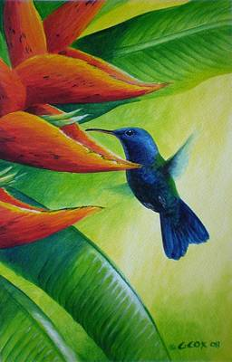 Painting - Blue-headed Hummingbird by Christopher Cox