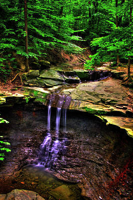 Photograph - Blue Hen Falls by Roger Passman