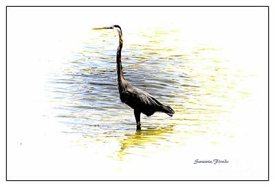 Mixed Media - Blue Heron by Athala Carole Bruckner