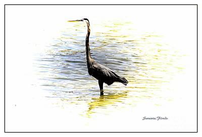 Mixed Media - Blue Heron by Athala Carole Bruckner