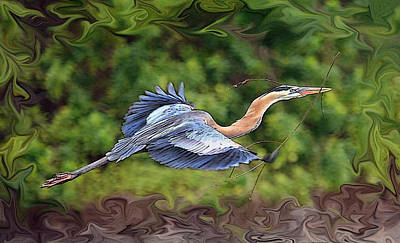 Photograph - Blue Heron Flight by Shari Jardina