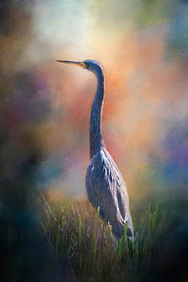 Photograph - Blue Heron In The Marsh by Lynn Bauer