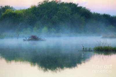 Photograph - Blue Heron Lake by Elizabeth Winter