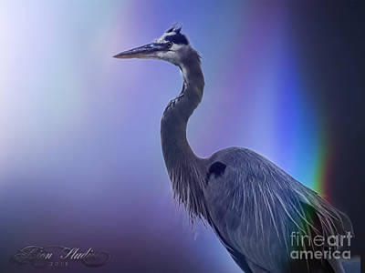 Photograph - Blue Heron by Melissa Messick