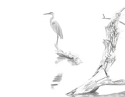 Herons Drawing - Blue Heron Minimal Sketch by Dan Sproul