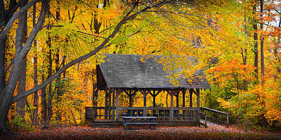 Photograph - Blue Heron Park In The Fall by Kenneth Cole
