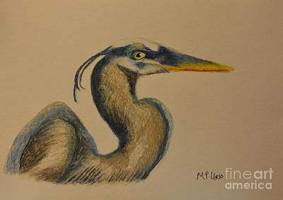 Pastel - Blue Heron - Pastels by Maria Urso