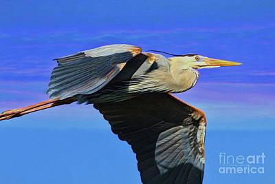 Blue Topaz Painting - Blue Heron Series Fly by Deborah Benoit