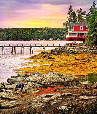 Photograph - Blue Hill Peninsula In Maine by Carolyn Derstine