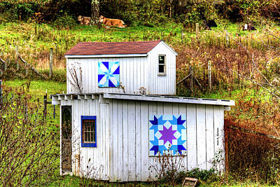 Photograph - Blue Hunter Carpenter Stars by Dale R Carlson