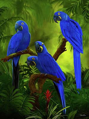 Hyacinth Macaw Art Painting - Blue Hyacinth Macaw by Jurgen Doelle