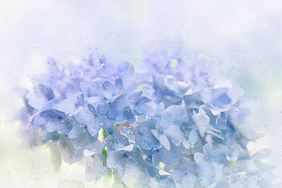 Flora Mixed Media - Blue Hydrangea Light by Terry Davis