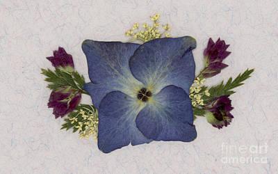 Blue Hydrangea Pressed Floral Design Art Print