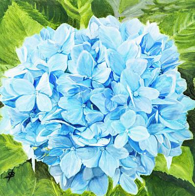 Painting - Blue Hydrangea by Sharon Bignell