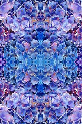 Photograph - Blue Hydrangeas 3 by Marianne Dow