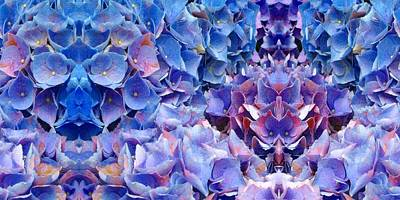 Photograph - Blue Hydrangeas 4 by Marianne Dow