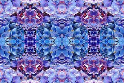 Photograph - Blue Hydrangeas 7 by Marianne Dow