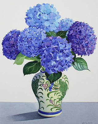 Hydrangea Watercolor Painting - Blue Hydrangeas by Christopher Ryland