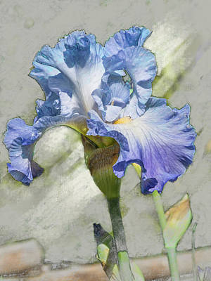 Digital Art - Blue Iris 2 by Mark Mille