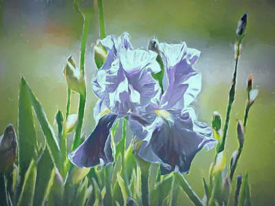 Photograph - Blue Iris by Leslie Montgomery