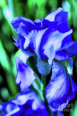 Digital Art - Blue Iris  by Rick Bragan