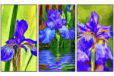 Triptych Photograph - Blue Iris Triptych 2 by Steve Harrington
