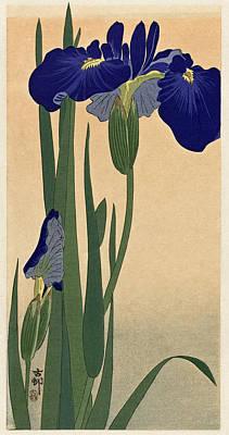 Digital Art - Blue Irises by Ruth Moratz