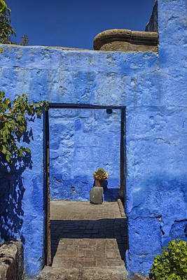 Photograph - Blue Is The Color by Patricia Hofmeester