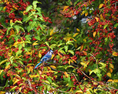 Painting - Blue Jay And Berries by Kerri Farley