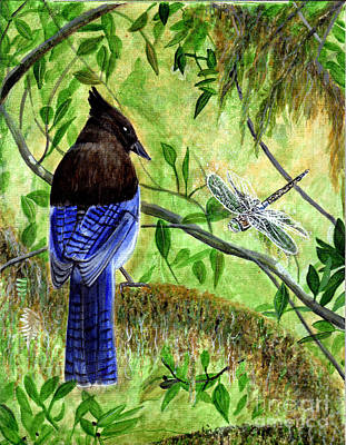 Painting - Blue Jay And Dragonfly by Michaeline McDonald