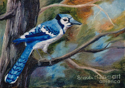 Painting - Blue Jay by Brenda Thour